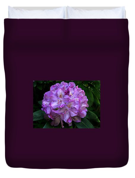 Duvet Cover featuring the photograph Rhododendron ' Roseum Elegans '  by William Tanneberger