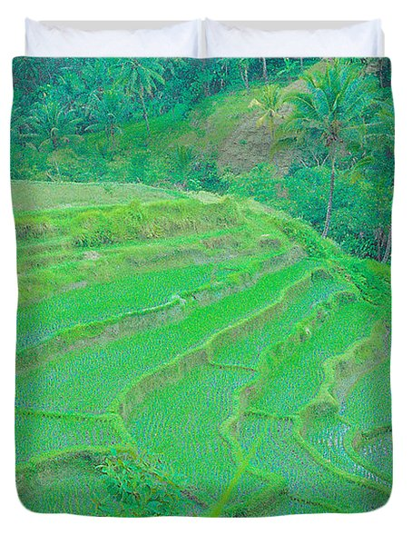Rice Fields In Indonesia Duvet Cover