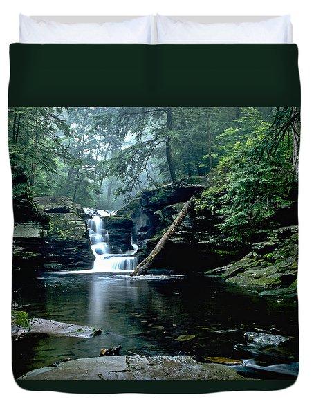 Ricketts Glen Falls 016 Duvet Cover by Scott McAllister