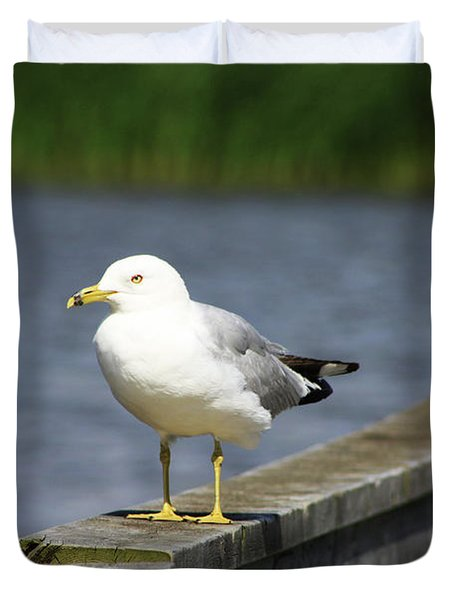 Duvet Cover featuring the photograph Ring-billed Gull by Alyce Taylor