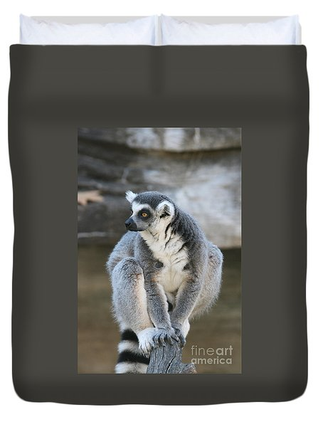 Duvet Cover featuring the photograph Ring-tailed Lemur #3 by Judy Whitton
