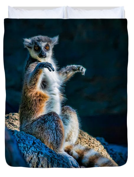 Ring-tailed Lemur Duvet Cover by Tim Stanley