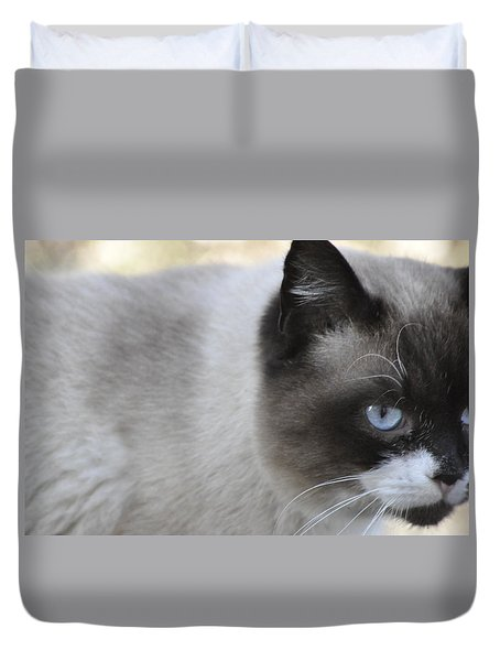Ringtail Duvet Cover
