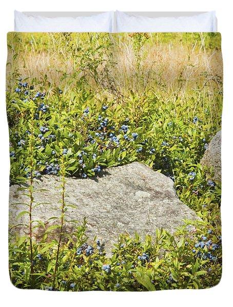Ripe Maine Low Bush Wild Blueberries Duvet Cover by Keith Webber Jr