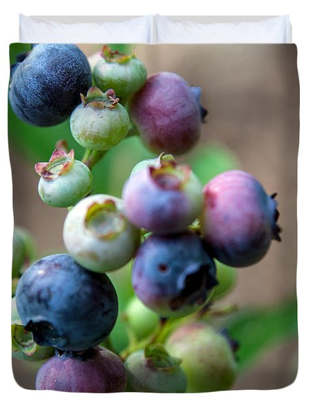 Ripening Blueberries Duvet Cover