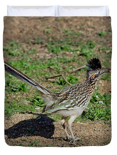 Roadrunner Male With Food Duvet Cover