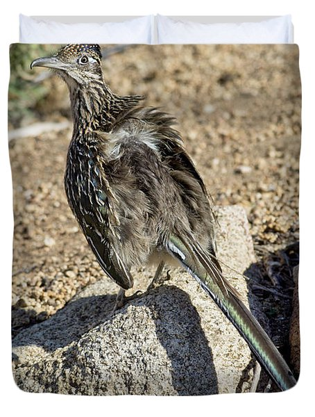 Roadrunner Warming In Sun Duvet Cover