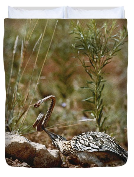 Roadrunner With Snake Duvet Cover