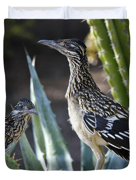 Roadrunners At Play  Duvet Cover