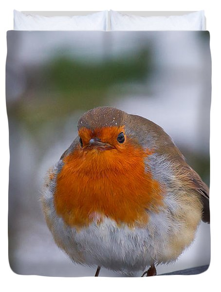 Robin 1 Duvet Cover by Scott Carruthers