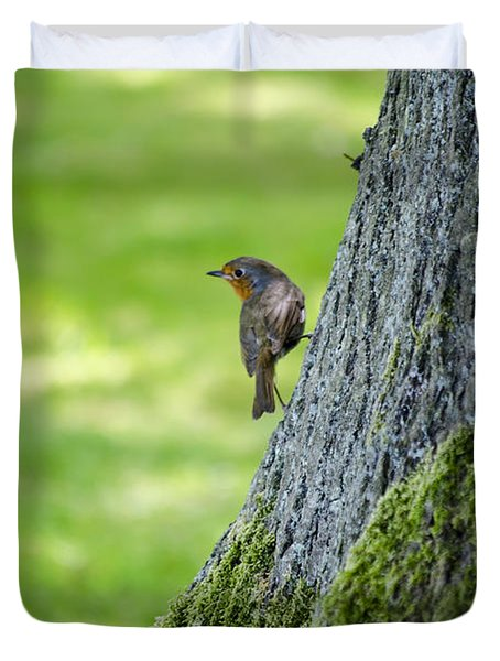 Robin At Rest Duvet Cover