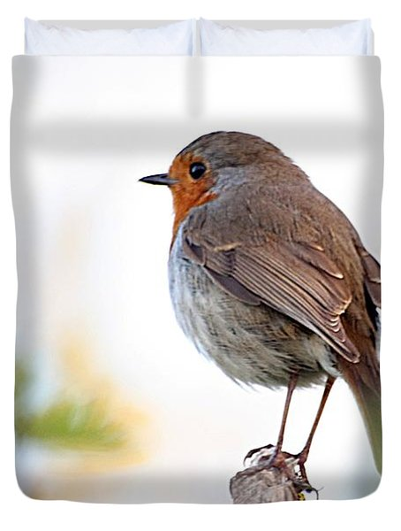 Robin On A Pole Duvet Cover