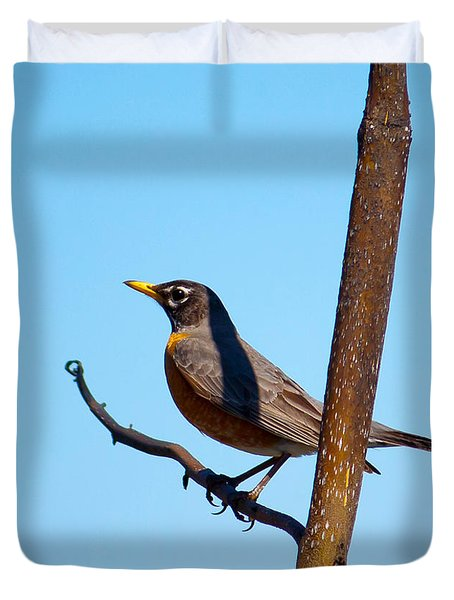 Robin Taking A Break Duvet Cover