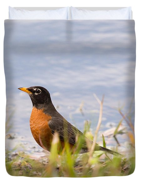Duvet Cover featuring the photograph Robin Viewing Surroundings by John M Bailey