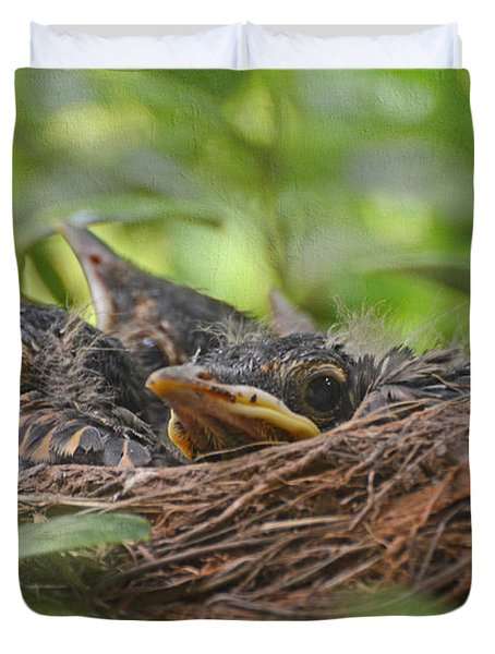 Robins In The Nest Duvet Cover