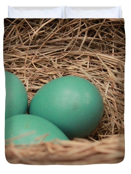 Robins Three Blue Eggs Duvet Cover