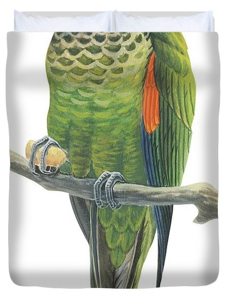 Rock Parakeet Duvet Cover by Anonymous
