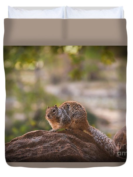 Rock Squirrel In Zion Duvet Cover by Robert Bales