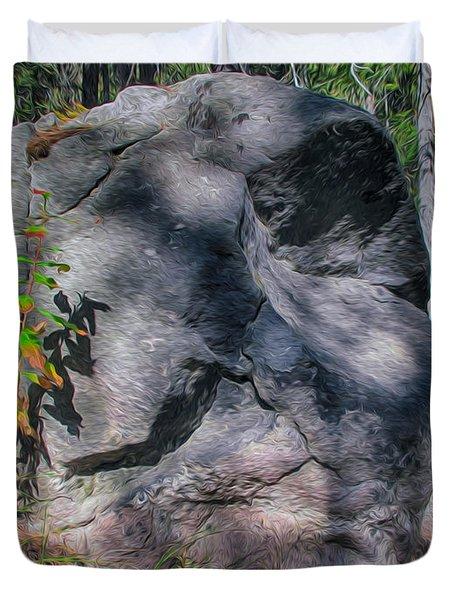 Rocky Ancestor Duvet Cover by Omaste Witkowski