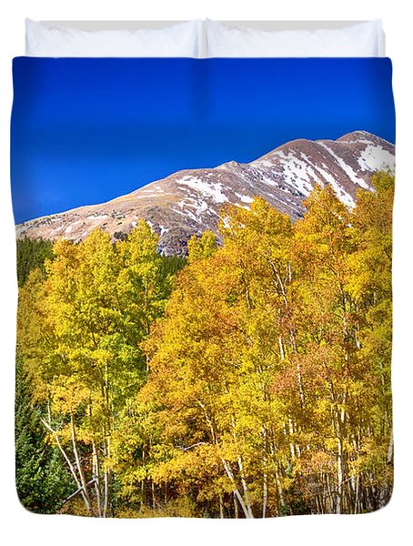 Rocky Mountain Autumn Bonanza Duvet Cover by James BO  Insogna