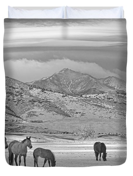Rocky Mountain Country Morning Bw Duvet Cover by James BO  Insogna