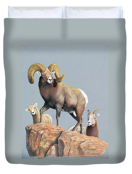 Rocky Mountain Ram Ewe And Lamb Duvet Cover