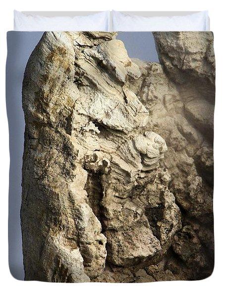 Roosevelt Geyser Duvet Cover by Adam Jewell