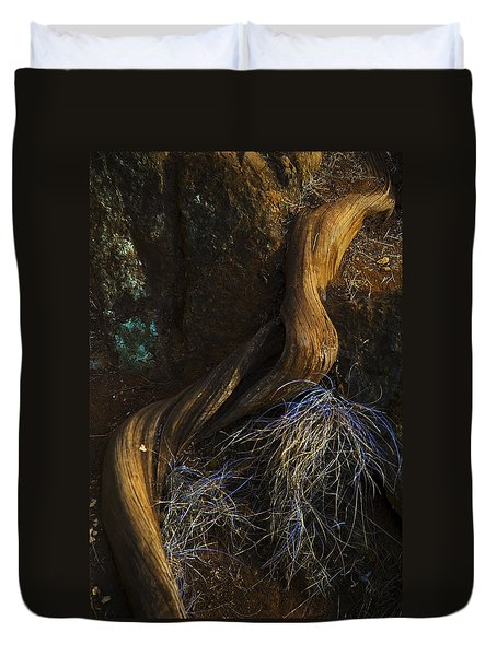 Duvet Cover featuring the photograph Tree Root by Yulia Kazansky