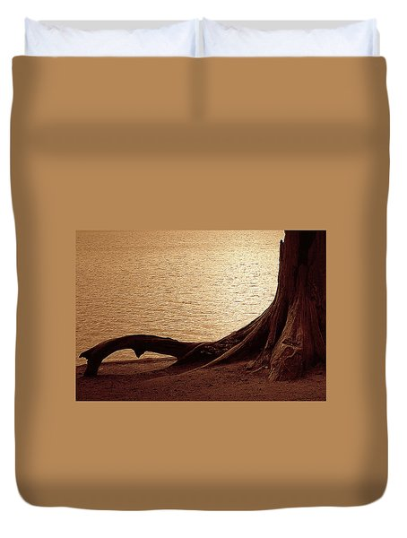 Roots Duvet Cover by Mim White