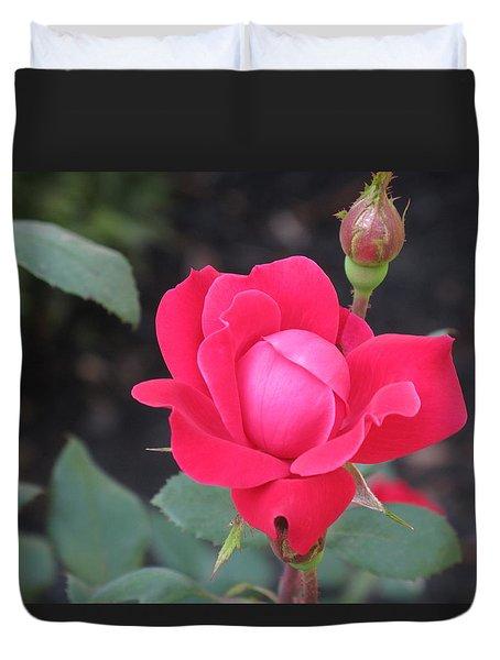 Ro's Last Rose Of Summer Duvet Cover