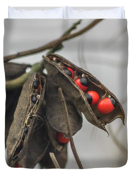 Rosary Pea Duvet Cover by Jane Luxton