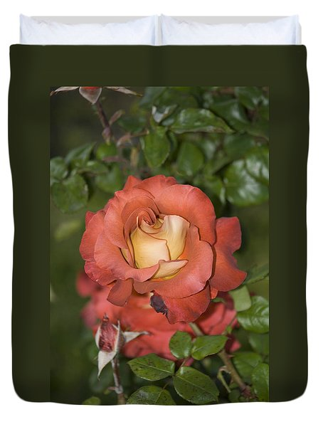 Rose 6 Duvet Cover