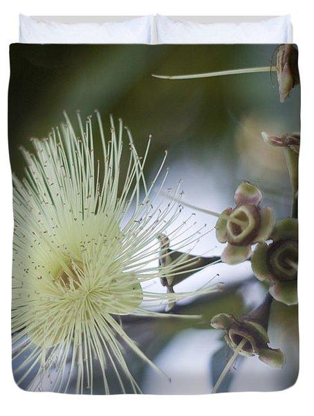 Rose Apple Blossom Duvet Cover by Kerryn Madsen-Pietsch