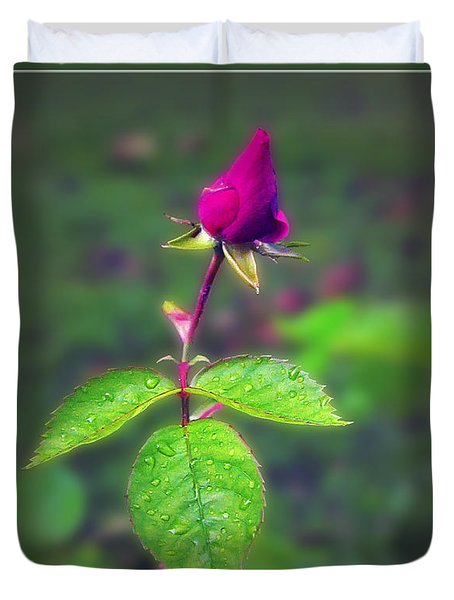 Rose Bud Duvet Cover by Brian Wallace