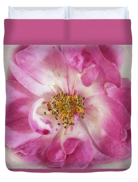 Duvet Cover featuring the photograph Rose by Elaine Teague