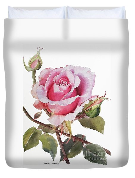 Watercolor Of Pink Rose Grace Duvet Cover