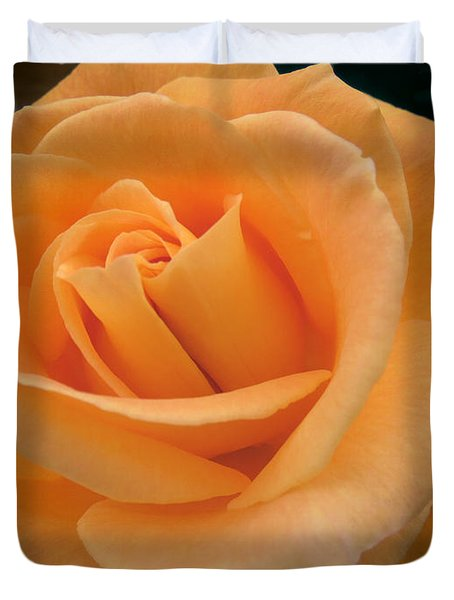 Duvet Cover featuring the photograph Rose by Laurel Powell