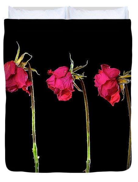 Rose Lineup Duvet Cover by Mauro Celotti
