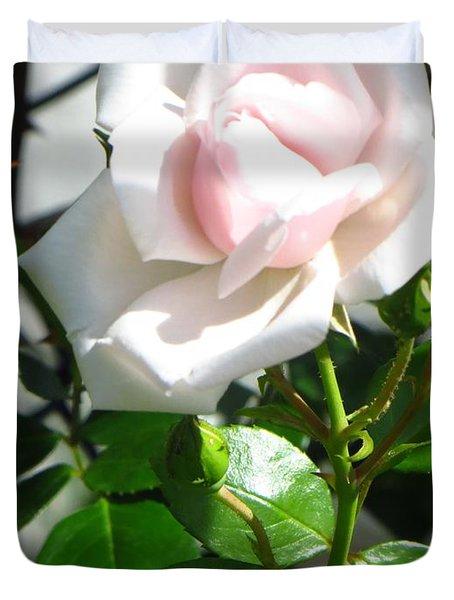 Rose Named Pearl Duvet Cover by Sonali Gangane