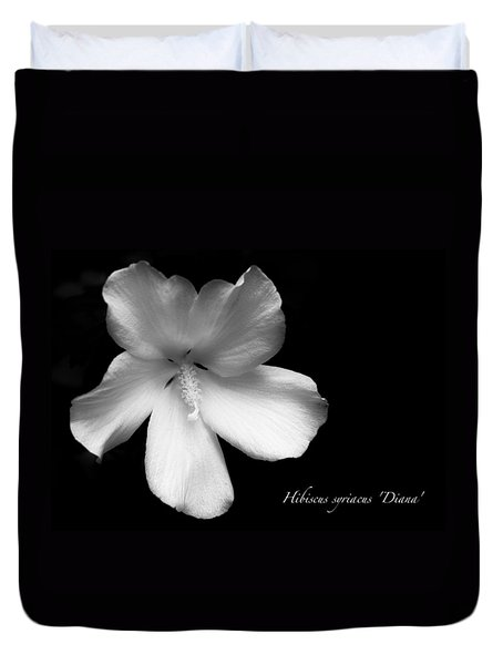Rose Of Sharon Hibiscus Bw Duvet Cover