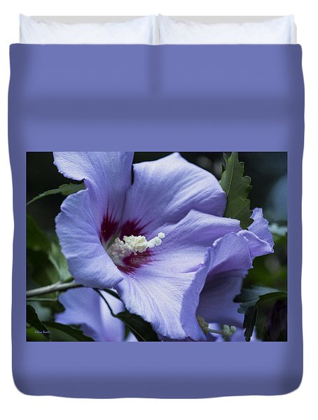 Rose Of Sharon Duvet Cover by Rebecca Samler