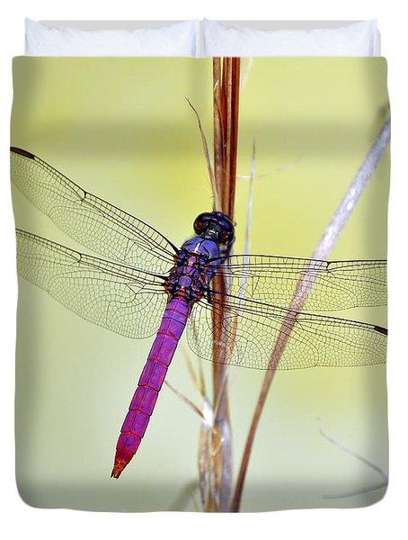 Roseate Skimmer Dragonfly Duvet Cover