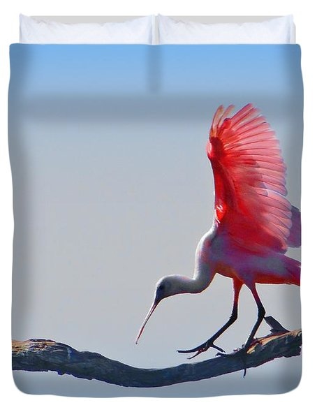 Roseate Spoonbill Duvet Cover by David Mckinney