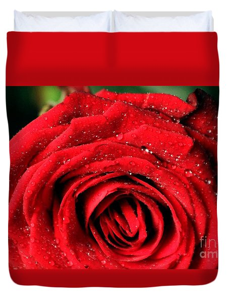 Duvet Cover featuring the photograph Roses 4 by Mariusz Czajkowski