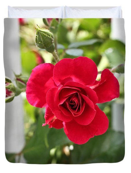 Duvet Cover featuring the photograph Roses Are Red by Joann Copeland-Paul