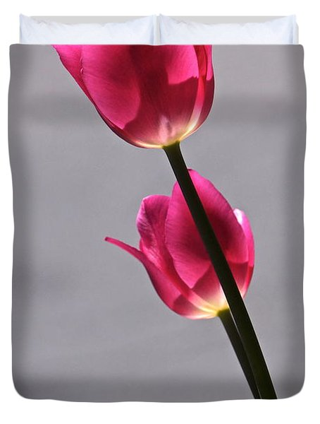 Rosy Loveliness For A Gray Day Duvet Cover by Byron Varvarigos