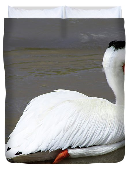 Duvet Cover featuring the photograph Rough Billed Pelican by Alyce Taylor