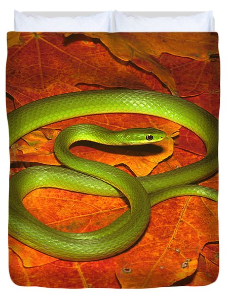 Rough Green Snake Duvet Cover