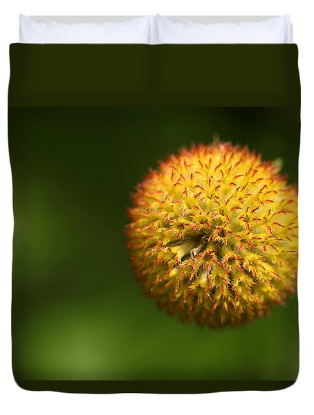 Round Flower Duvet Cover by Karol Livote