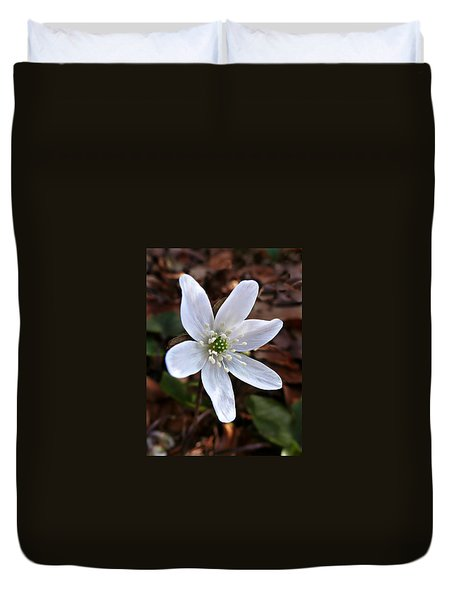 Duvet Cover featuring the photograph Wild Round-lobe Hepatica by William Tanneberger